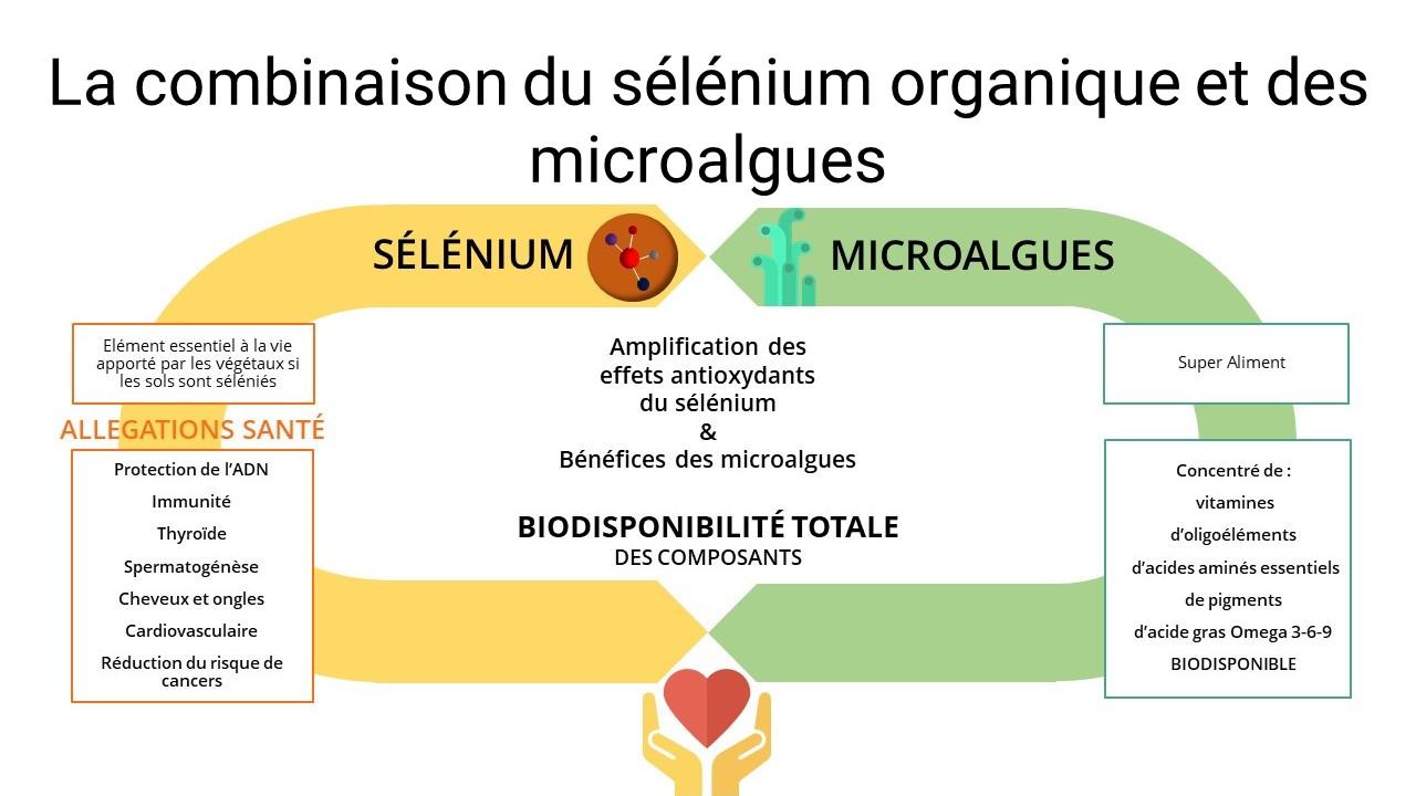 metabolium sélénium microalgue biodisponible